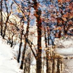 zimné reflexie