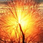 súhra slnka a hmly